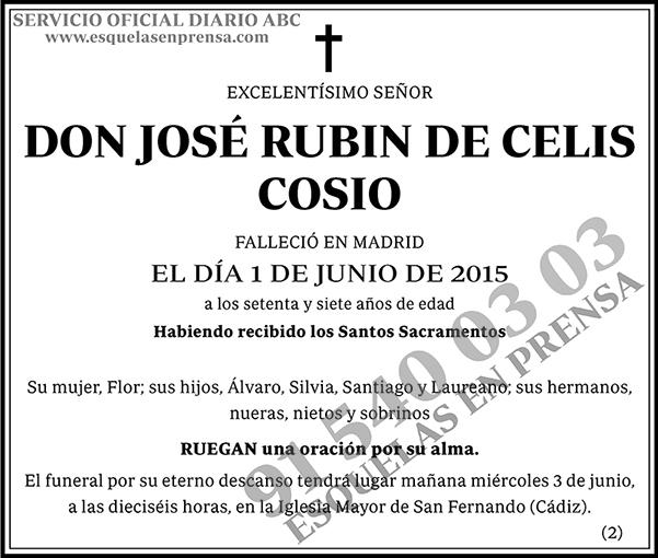 José Rubin de Celis Cosio